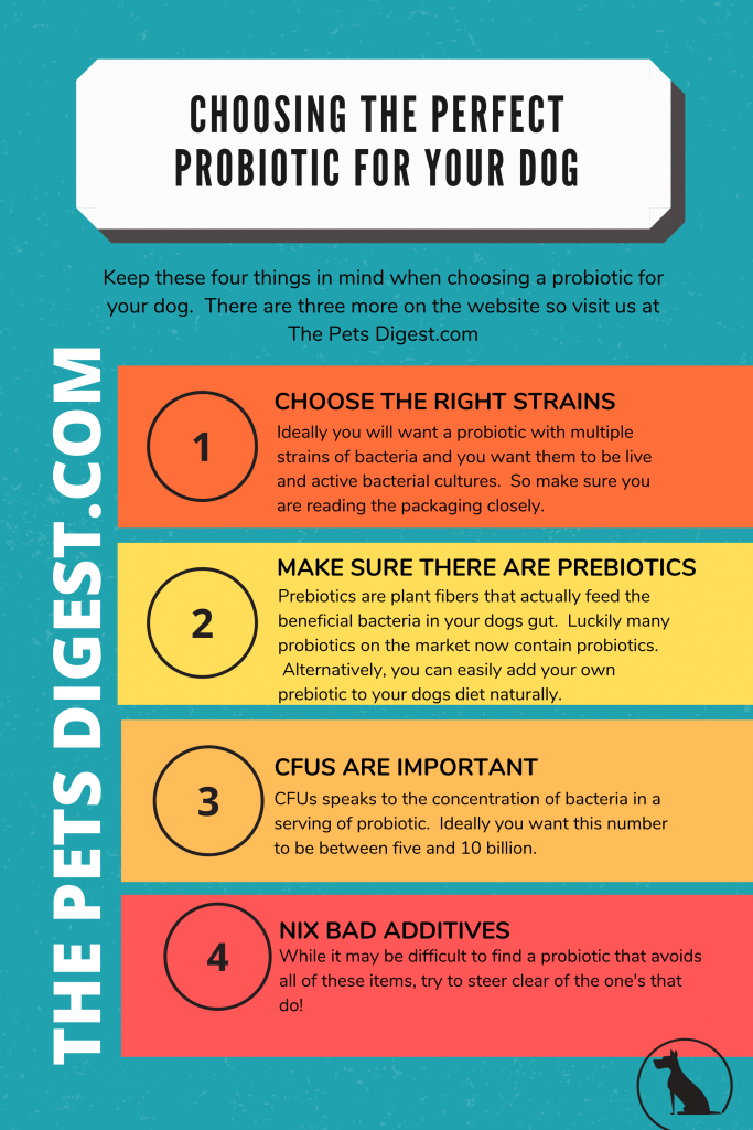 chart about choosing probiotics for your dog