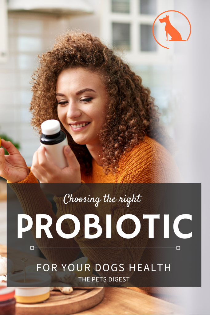 woman looking at pills probiotic dogs