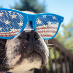 Keep your pets safe this July 4th!